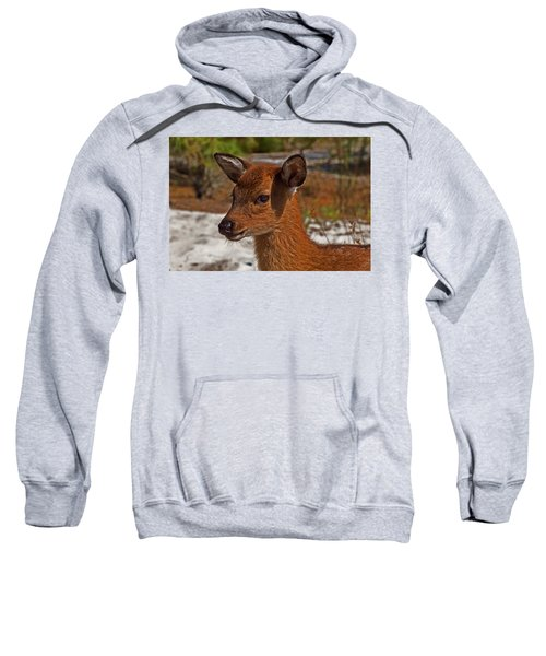 Assateague Island Sika Deer Fawn Sweatshirt