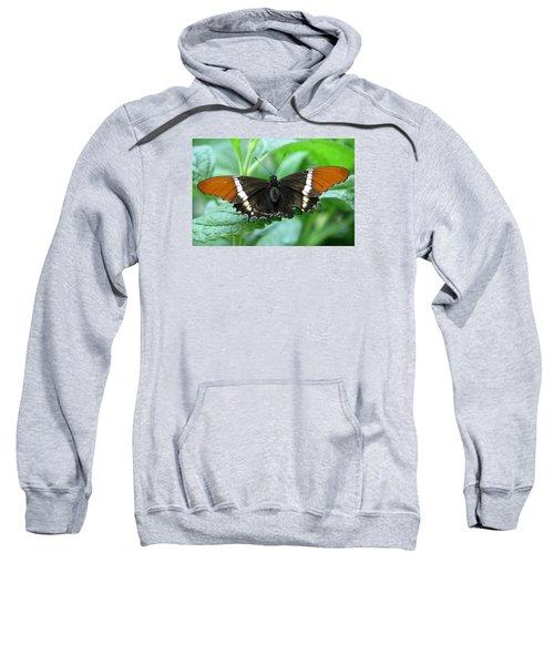At Rest Sweatshirt