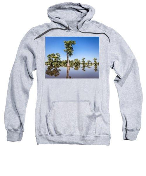 Atchafalaya Cypress Tree Sweatshirt