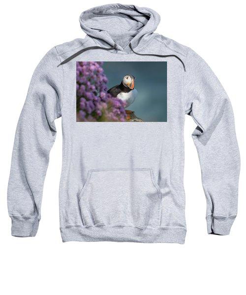 Atlantic Puffin - Scottish Highlands Sweatshirt