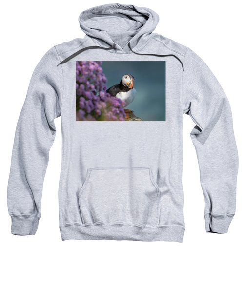 Atlantic Puffin - Scottish Highlands Sweatshirt