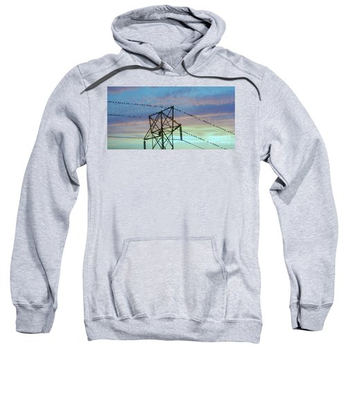 Auditioning For A Hitchcock Movie Sweatshirt