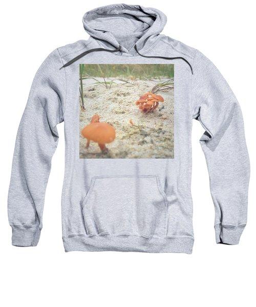 Auf Pilzjagd.  #pilze #sandboden Sweatshirt