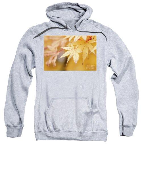 Autum Is Here Sweatshirt