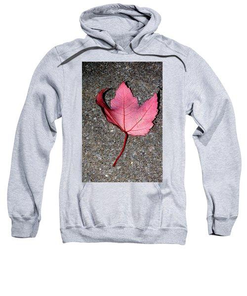 Autum Maple Leaf 2 Sweatshirt