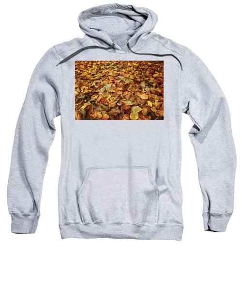 Autumn Carpet Sweatshirt