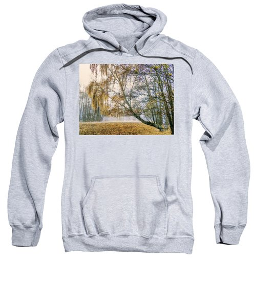 Autumn Colorful Birch Trees Paint Sweatshirt