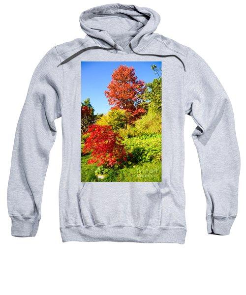 Autumn Colours Sweatshirt