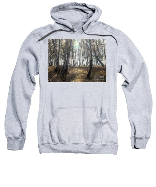 Autumn Deep Fog In The Morning Birch Grove Sweatshirt