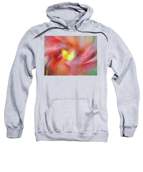 Autumn Foliage 12 Sweatshirt