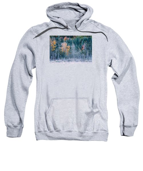 Autumn Frost Sweatshirt