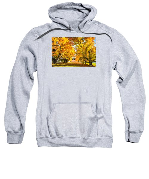 Autumn Gold IIi Sweatshirt