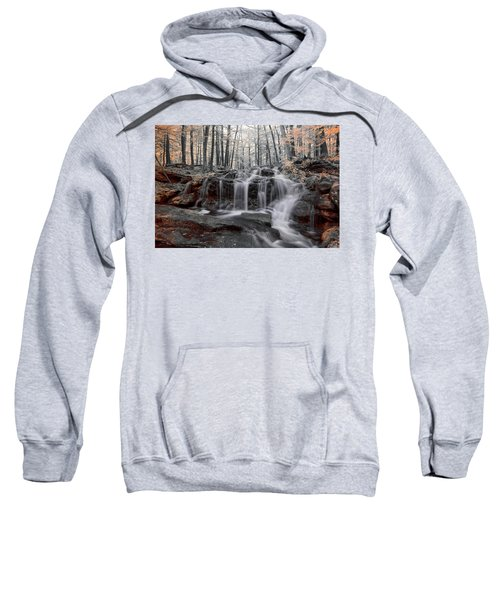 Autumn In Spring Infrared Sweatshirt