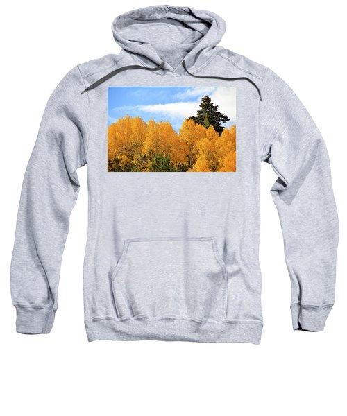 Autumn In The Owyhee Mountains Sweatshirt