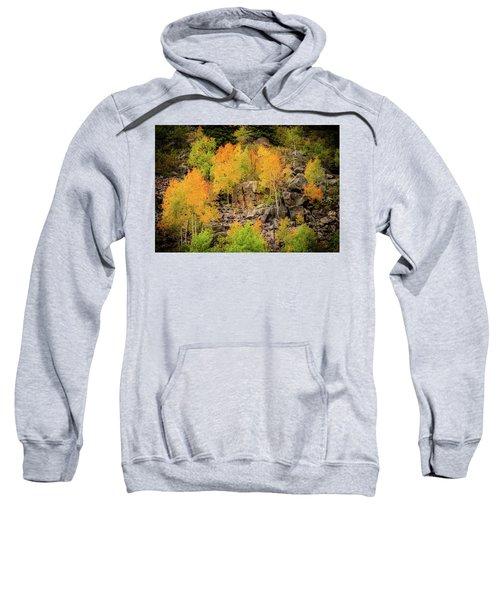 Autumn In The Uinta Mountains Sweatshirt