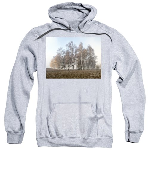 Autumn Landscape In A Birch Forest With Fog Sweatshirt