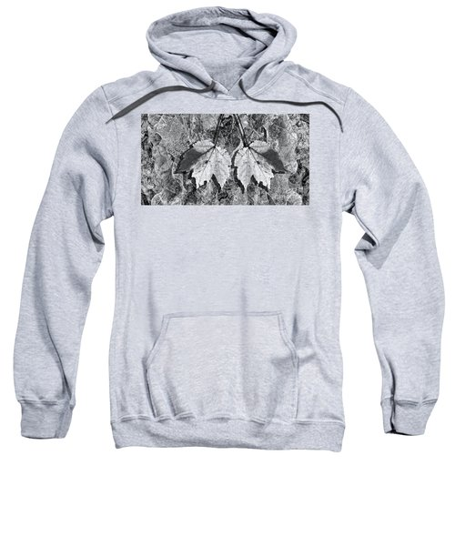 Autumn Leaf Abstract In Black And White Sweatshirt