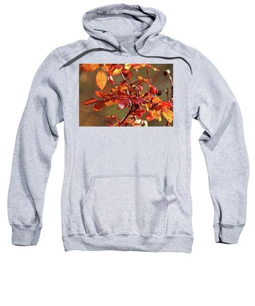 Autumn Wild Rose Hips Sweatshirt