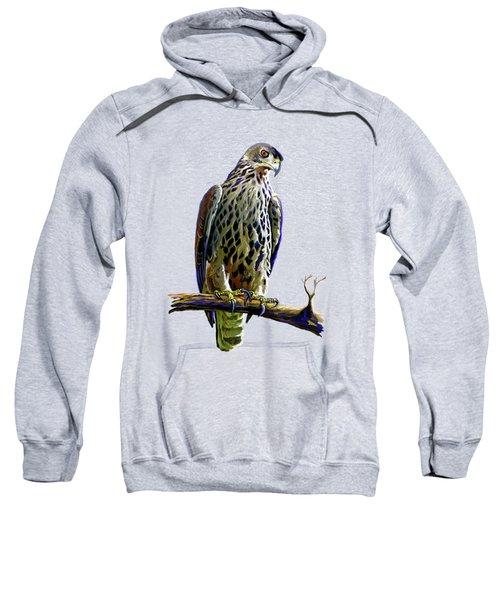 Ayres's Hawk Eagle  Sweatshirt