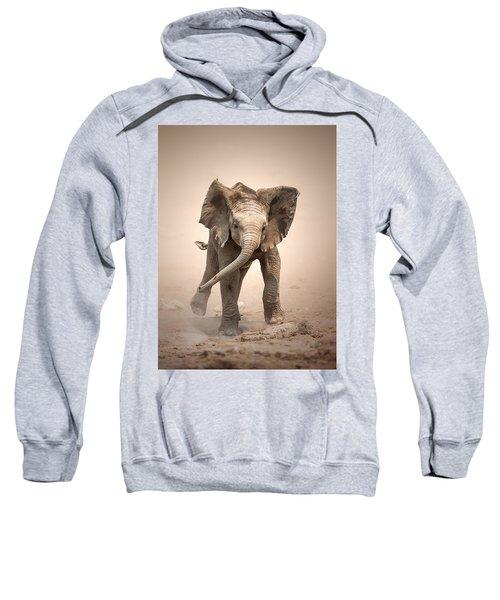 Baby Elephant Mock Charging Sweatshirt