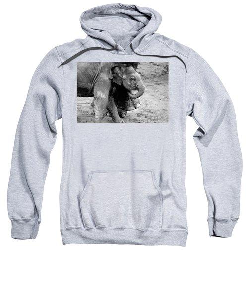 Baby Elephant Security Sweatshirt