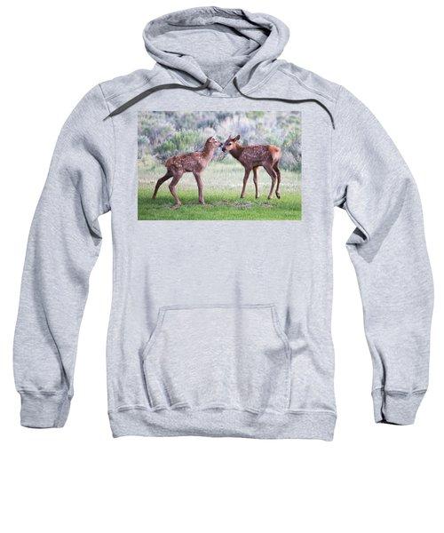 Baby Elk Sweatshirt
