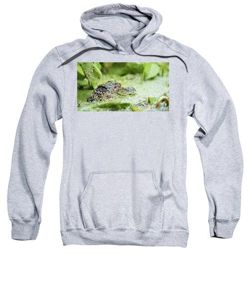 Baby Gator Sweatshirt
