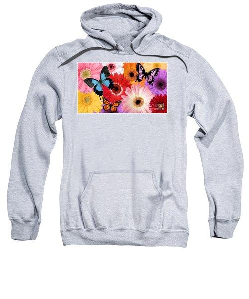 Summer's Design Sweatshirt