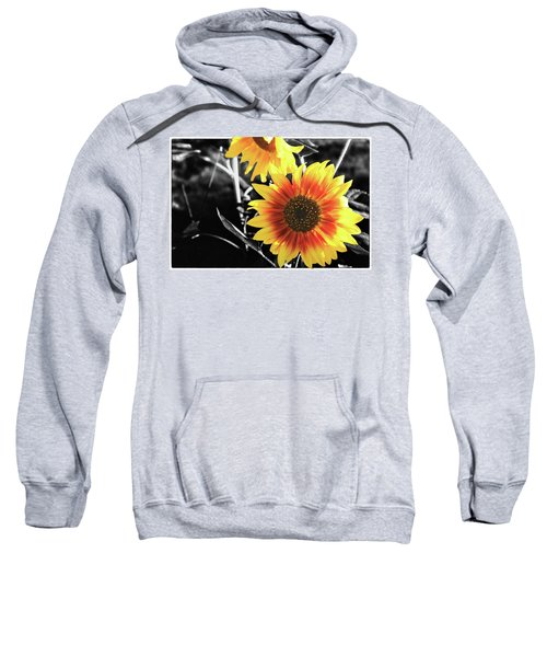 Back-lit Brilliance Sweatshirt