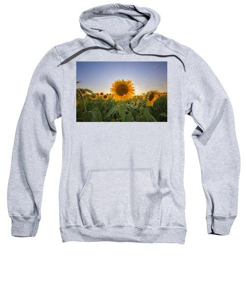 Backlit Sweatshirt