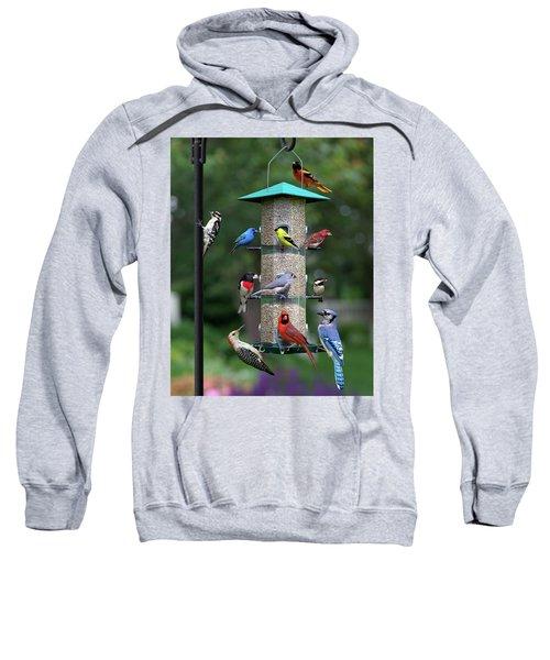 Backyard Bird Feeder Sweatshirt