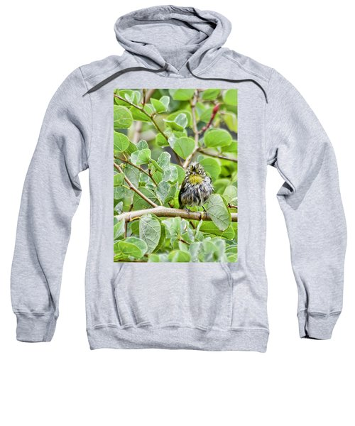 Bad Hair Day Sweatshirt