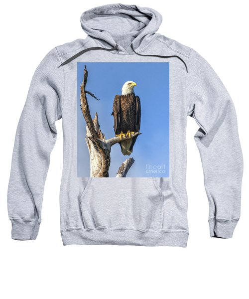 Bald Eagle 6366 Sweatshirt