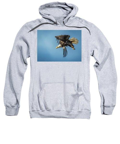 Bald Eagle Flight 1 Sweatshirt