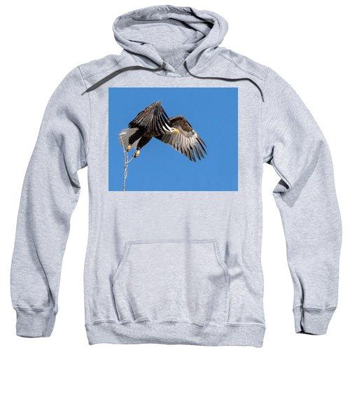 Bald Eagle Flight 3 Sweatshirt