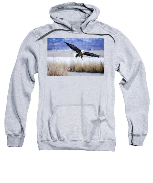 Bald Eagle Landing Sweatshirt