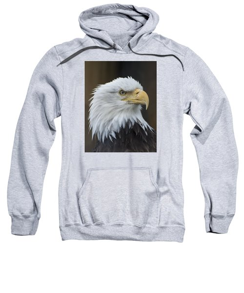 Bald Eagle Portrait Sweatshirt by Gary Lengyel
