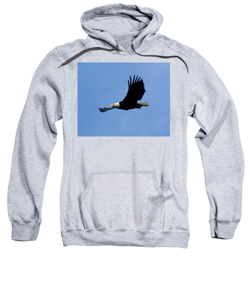 Bald Eagle Soaring High Sweatshirt