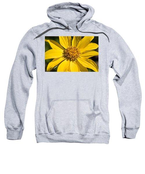 Balsamroot 2 Sweatshirt