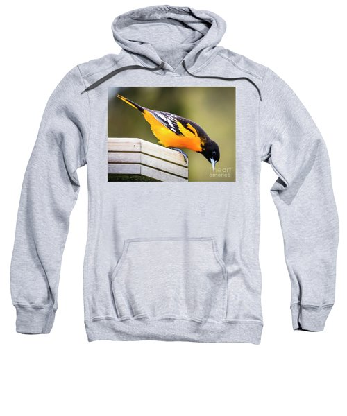 Baltimore Oriole About To Jump Sweatshirt