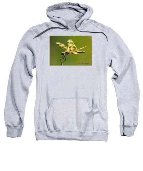 Banded Pennant, Female Sweatshirt