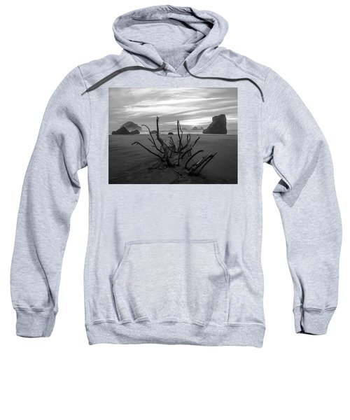 Bandon Beach Tree Sweatshirt