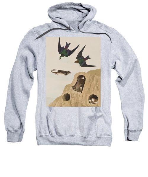 Bank Swallows Sweatshirt by John James Audubon