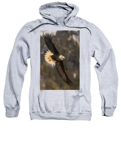 Banking Bald Eagle Sweatshirt