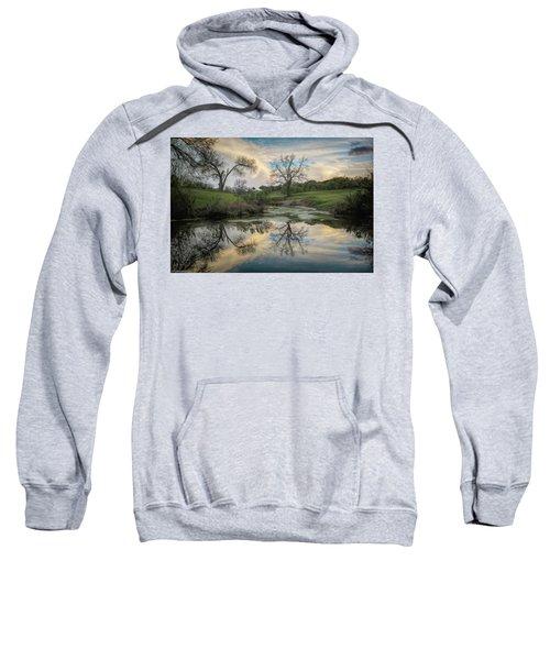 Bare Tree Reflections Sweatshirt