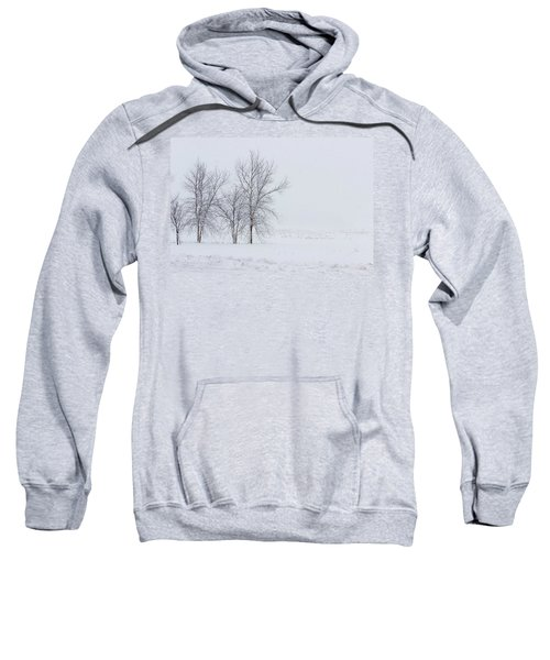 Bare Trees In A Snow Storm Sweatshirt