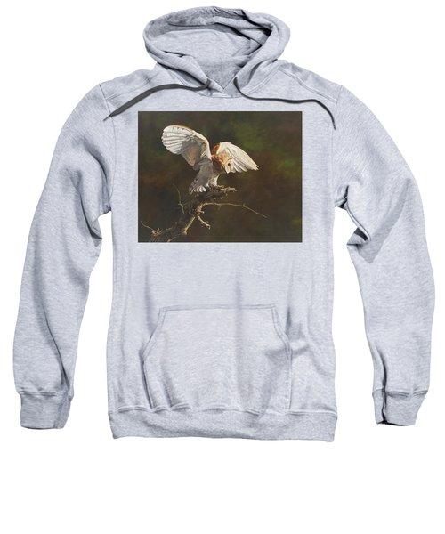 Barn Owl Sweatshirt