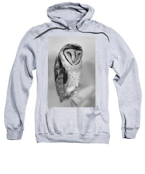Barn Owl II Sweatshirt