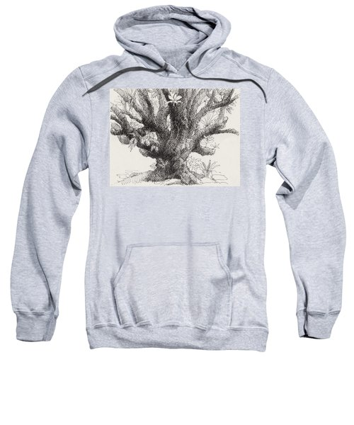 Barringtonia Tree Sweatshirt