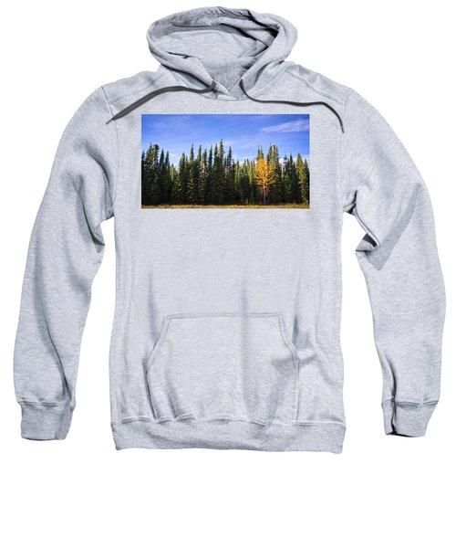Be Yourself Sweatshirt